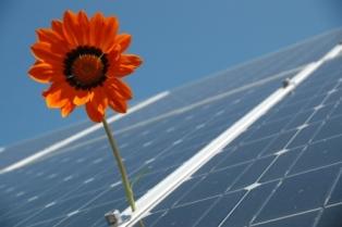 Der Klimawandel schafft die Anreize selber
